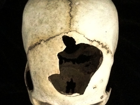Meeting a new skull