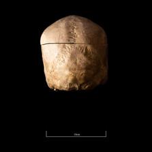 Skull FR30 - 9139.jpg