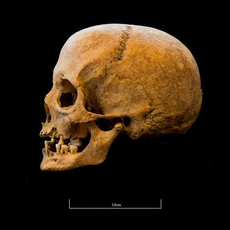 Skull A044EH - 6300.jpg