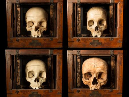 Skulls a plenty