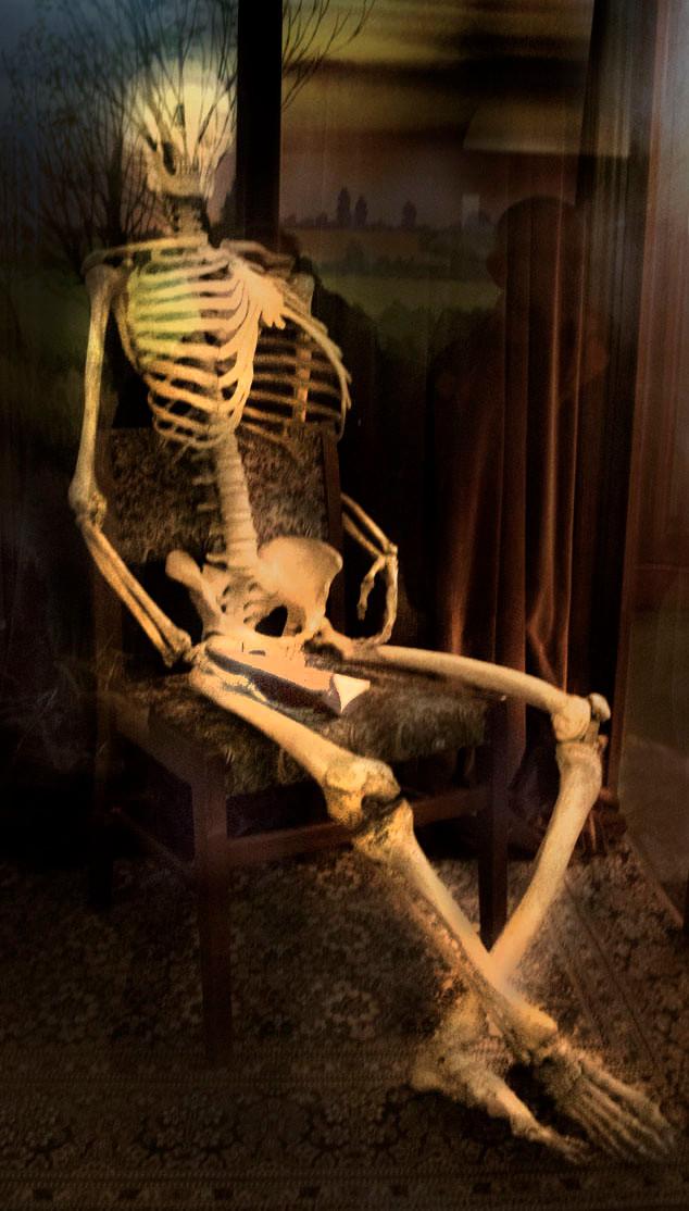 The skeleton in Norwich Castle Museum