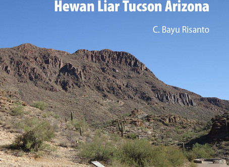 Hewan Liar di Tucson Arizona