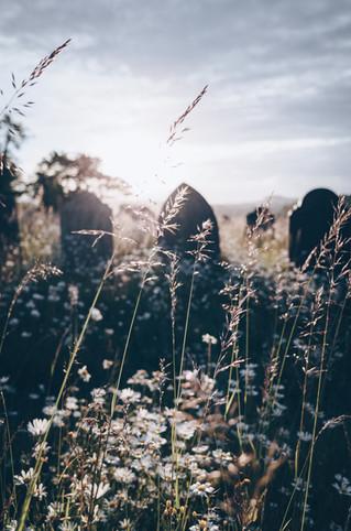 Di Kuburan ...
