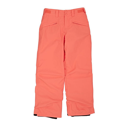 Billabong Snow Pants