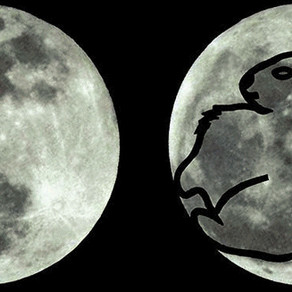 """""""The Rabbit in the Moon"""""""