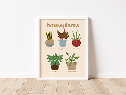 Houseplants Print