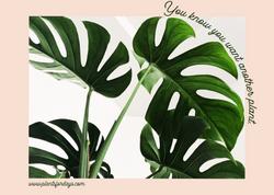 Plant Banner Advertisement