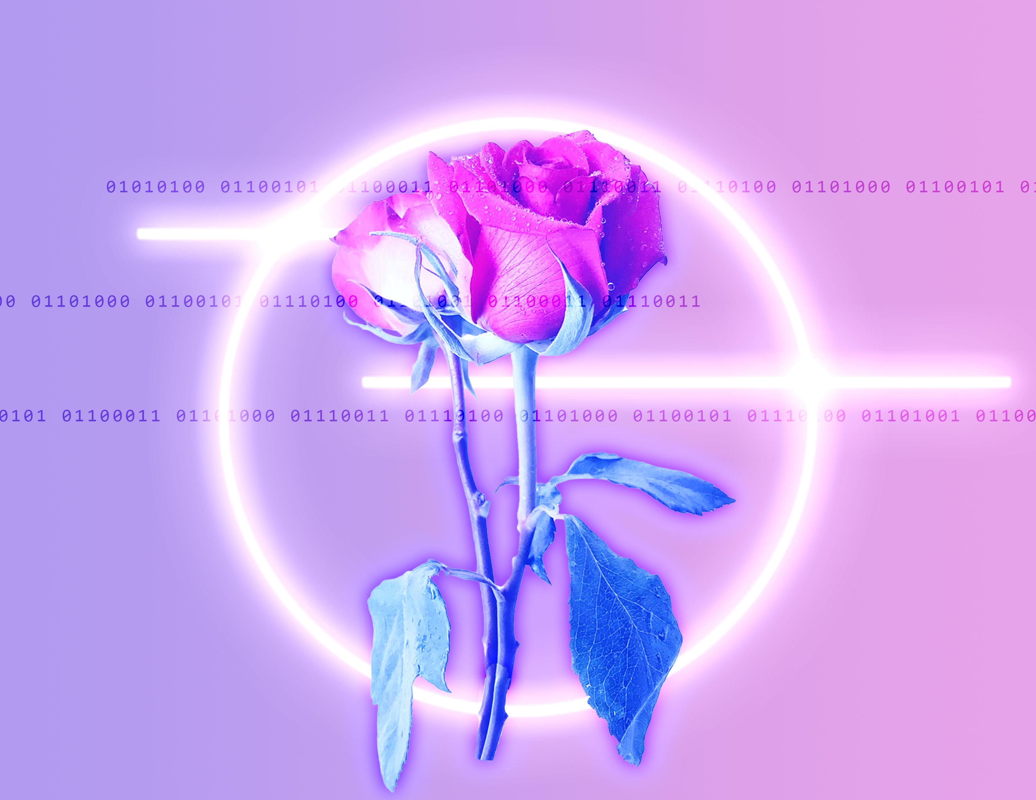 flowers&code