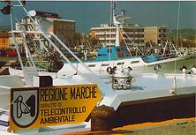 resize argonaut marche.png