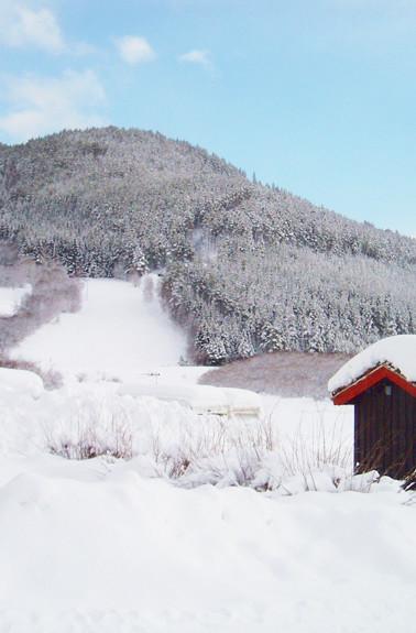 Holungsøy_Camping_-_Vinter.jpg