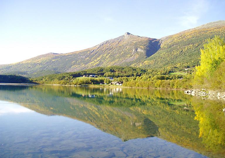 Holungsøy_Camping_-_Fjorden.jpg