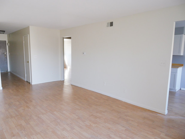 Entry and Main Living Space