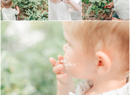Family Photographer Chapel Hill | Child Outdoor Session | Camden Park in Fearrington Village