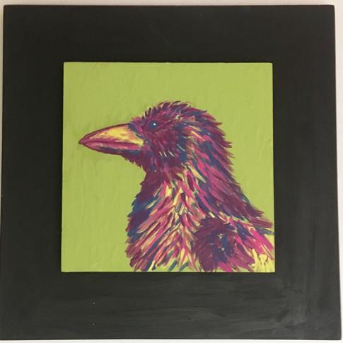 Corvus 3 Acrylic
