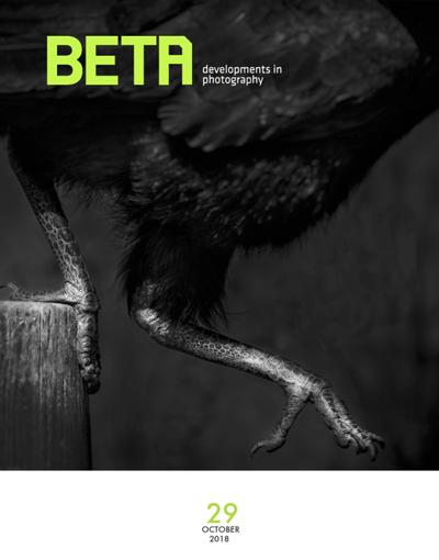 beta 29 Oct 2018