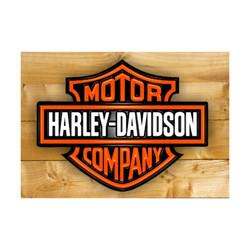 24 - HARLEY-DAVIDSON - R$ 9,00