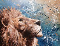50_Lion_1080x.jpg