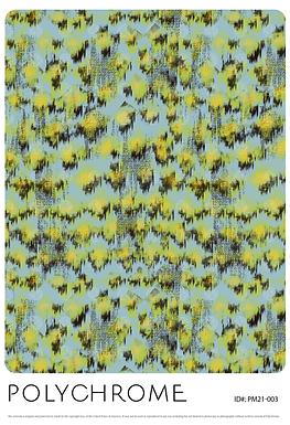PM21-003 original print pattern