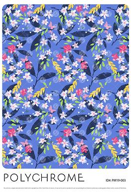 PM19-003 original print pattern