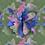 Thumbnail: CA19-002 original print pattern