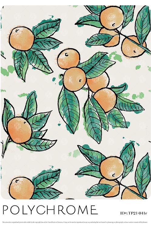 TP21-041r original print pattern