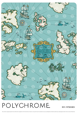 TP20-005 original print pattern