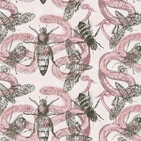 DM16-001_Snakes-Insects_Swatch-Blush.png