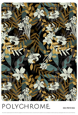 PM19-002 original print pattern