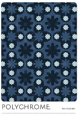 TL21-004 original print pattern