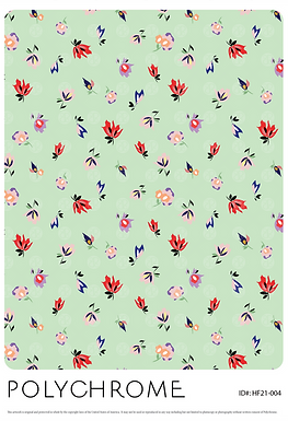 HF21-004 original print pattern