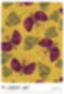 DK17-002 original print pattern