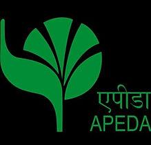 apeda logo.jpg
