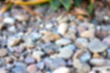 Rock 1_edited.jpg