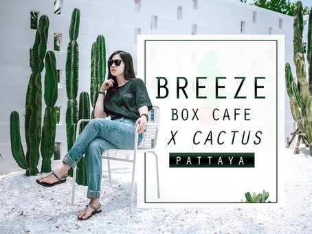 BREEZE BOX CAFE คาเฟ่โคตรเท่ สไตล์มินิมอล