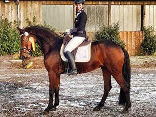 SIEG - Fürstenliebe gewinnt in Ihrer erste Reitpferdeprüfung