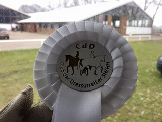 3. Platz für Titolas in der Dressurpferde A in Schenefeld mit einer 7,8