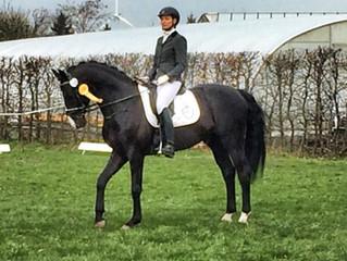 Sieg in der Reitpferdeprüfung in Selsingen