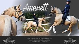 Amanett.png