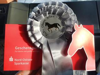 2. Platz in der Reitpferdeprüfung beim Remontenturnier in Behrendorf