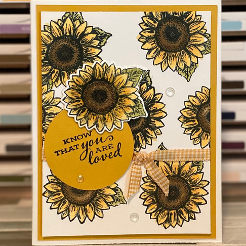 Celebrate Sunflowers is the Bundle!
