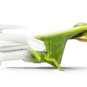 【新品介紹】Parrot ANAFI Ai 靈感來自大自然