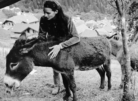 Intervista con la poetessa Gaia Baracetti