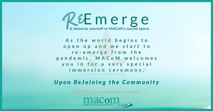 ReEmerge Landscape.png