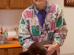 Veterinarian- Laura Bougie