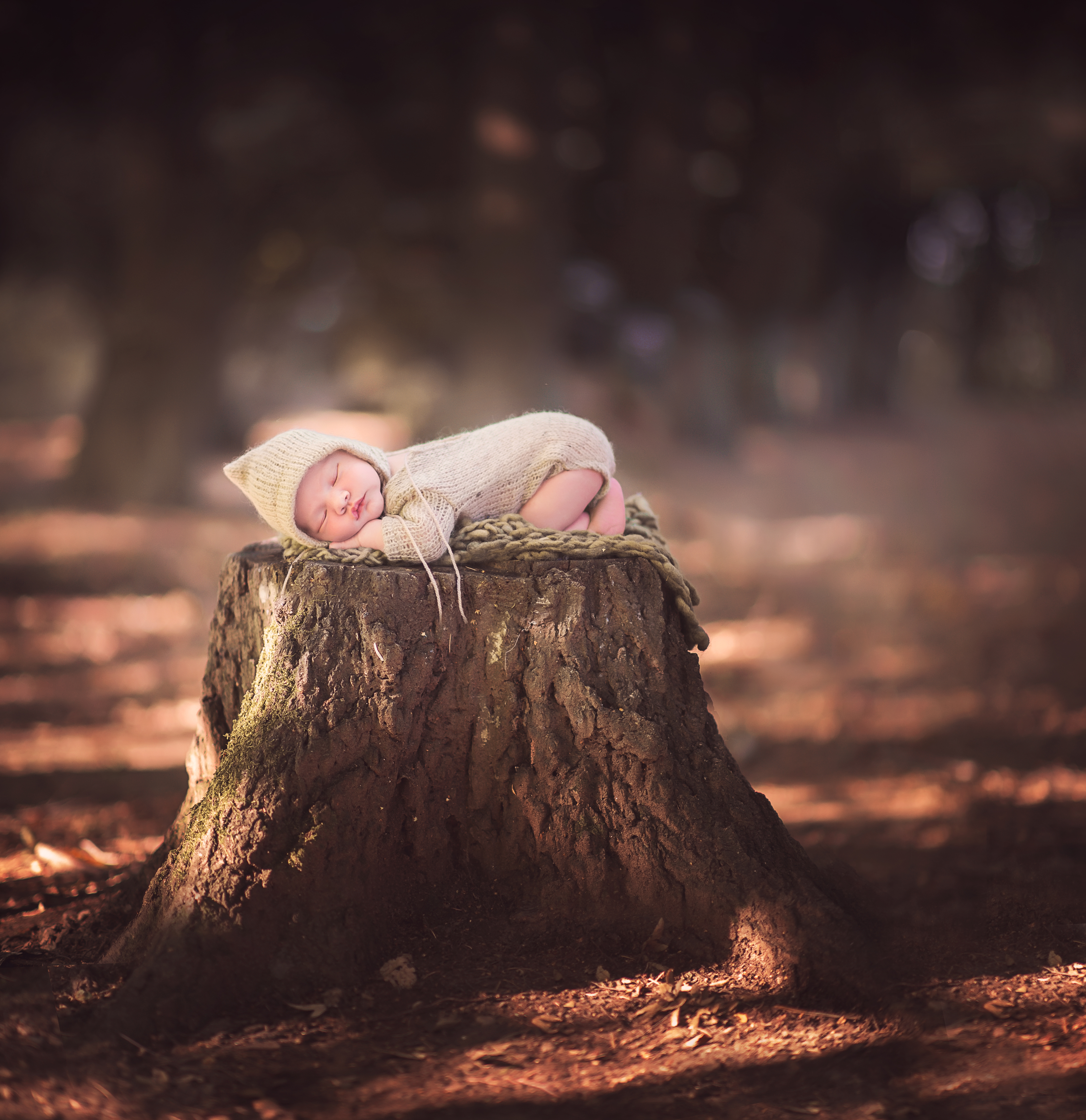 fotografa di neonati monza brianza