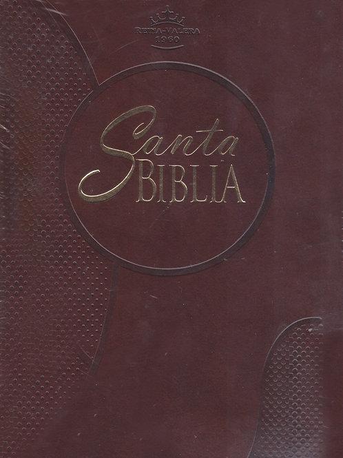 Santa Biblia /cafe