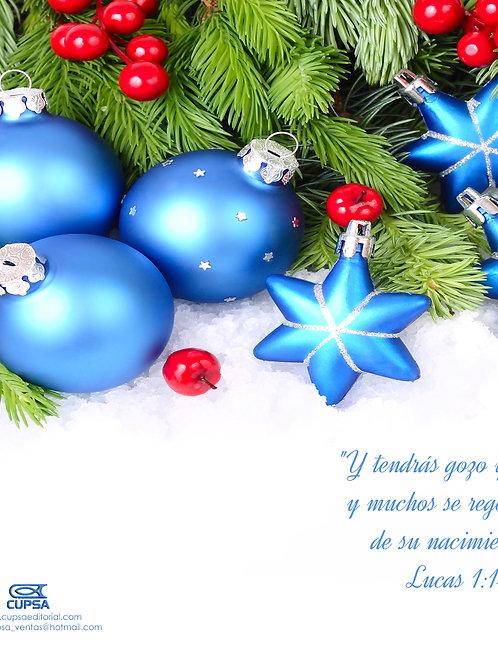 Boletin navidad esfera azul