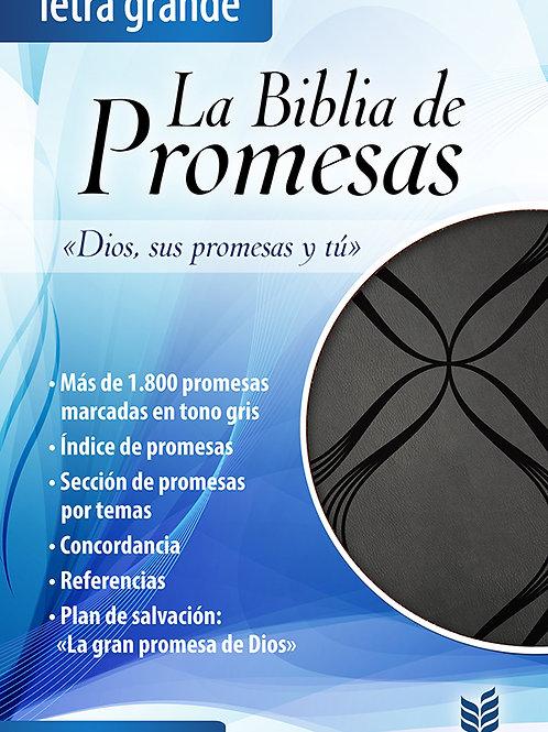 La biblia de promesas