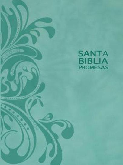 Biblia Edición Promesas