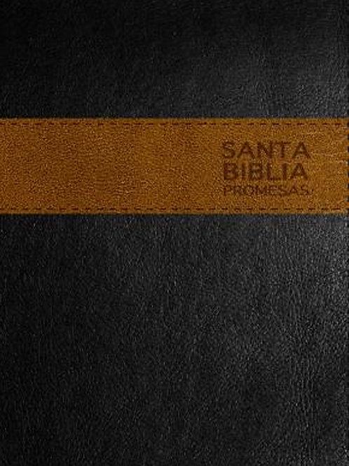 Santa Biblia Promesas